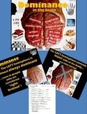 Psychology - PowerPoint w/ Quiz - Left-Brain / Right-Brain Dominance
