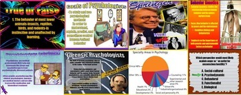 Psychology Prologue Introduction History & Approaches, Careers PowerPoint