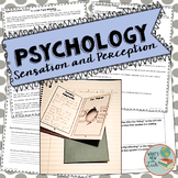 Psychology Sensation and Perception Activities