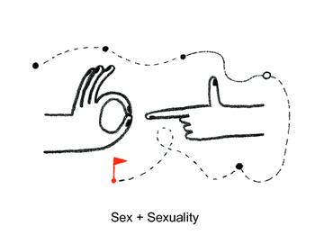 Psychology: Sex + Sexuality (Presentation)