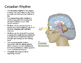 Psychology: Sleep + Dreams (Presentation)