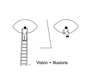 Psychology: Vision + Illusions (Presentation + Worksheet)