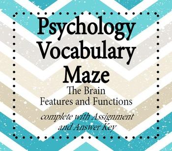 Psychology Vocabulary Maze - The Brain