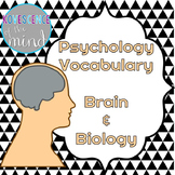 Psychology Vocabulary: The Brain and Biology