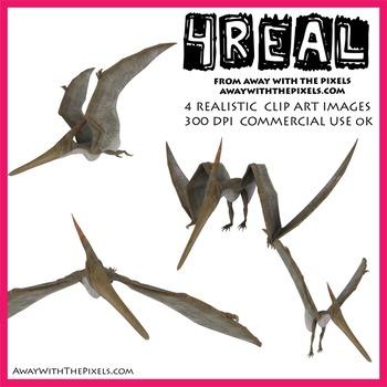 Pteranadon - 4 Realistic Dinosaur Clip Art Images