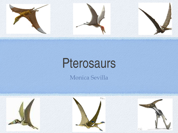 Pterosaurs Powerpoint