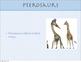 Pterosaurs eBook