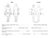 Puberty, labelling body parts
