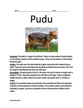 Pudu - Endangered Deer species - Informational Article Facts Questions