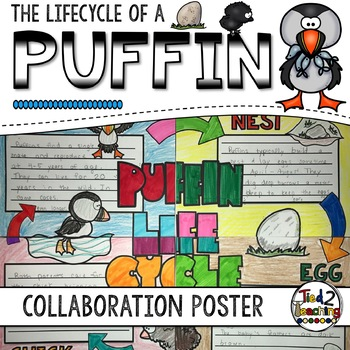 Puffin Life Cycle Activity: Collaborative Research Poster