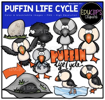 Puffin Life Cycle Clip Art Bundle {Educlips Clipart}