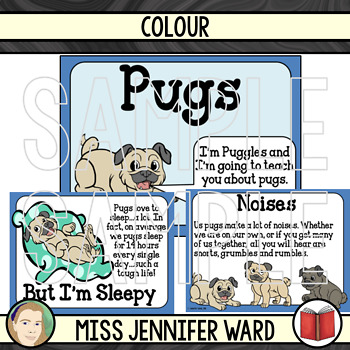 Pugs Presentation and Workbook