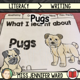 Pugs Presentation and Workbook