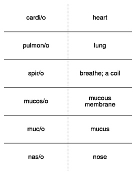 Pulmonology Combining Forms Flash Cards