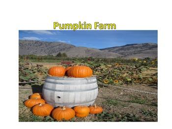 Pumkin Farm