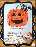 Fall Pumpkin Craft & Life Cycle for preschool, kindergarten, first grade