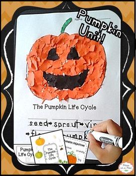 Fall Pumpkin Craft & Life Cycle for preschool, kindergarte