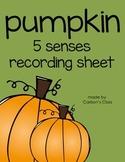 Pumpkin 5 Senses Recording Sheet -- FREEBIE