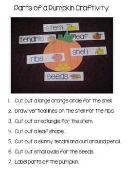 Pumpkin Activities for Early Childhood