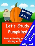 Pumpkin Activity Booklet, Worksheets and Lesson Plans for