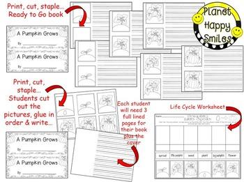 Pumpkin Activity ~ Pumpkin Life Cycle Writing Activity:  A Pumpkin Grows