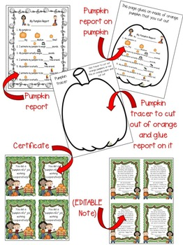 Pumpkin Activity ~ Pumpkin Report ~ Cooperative Group Work