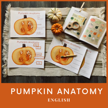 Pumpkin Anatomy Poster Pack