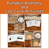 Pumpkin Anatomy and Life Cycle Activities