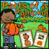 Parts of a Pumpkin | Anchor Charts | Posters