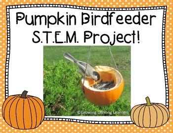 Pumpkin Birdfeeder S.T.E.M. Project!