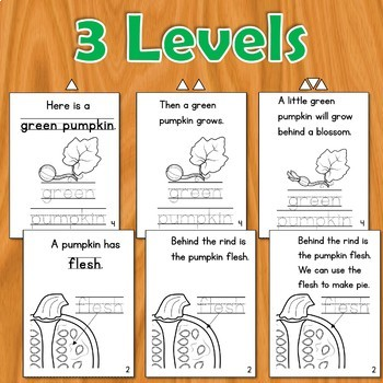 Pumpkin Books - Differentiated Readers