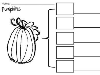 Pumpkin-Close Read