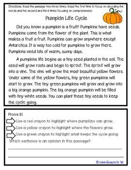 Pumpkin Close Reading