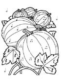 Pumpkin Color by Rhythm - Ta ti-ti