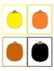 Pumpkin Colors Write the Room