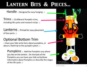 Pumpkin Craft  ::  Pumpkin Life Cycle