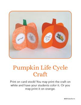 Pumpkin Craft {Pumpkin Life Cycle Craftivity}