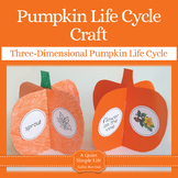 Pumpkin Craft {Pumpkin Life Cycle Craftivity}