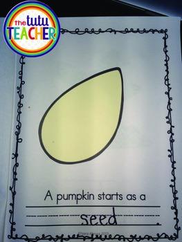 Pumpkin Craftivity Book