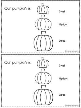 Pumpkin Day Book