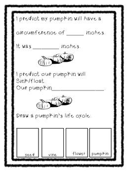 Pumpkin Day Recording Sheet: Kindergarten