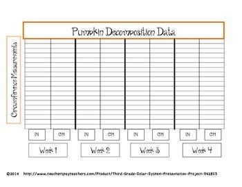 Pumpkin Decomposition Observation Project