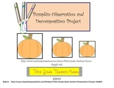 Pumpkin Decomposition Observation Project