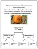 Pumpkin Dichotomous Key