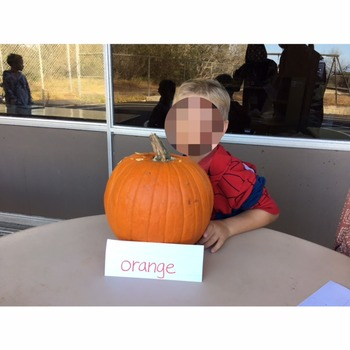 Pumpkin Experience and Personalized Reader