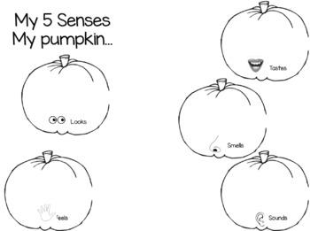 Pumpkin Exploration Journal
