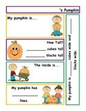 Pumpkin Exploration Recording Sheet