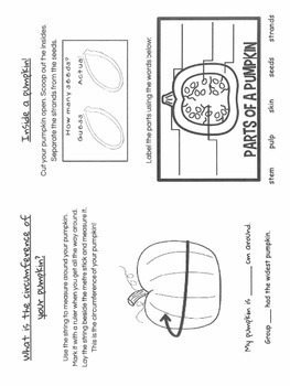 Pumpkin Exploration booklet/ activities (fold and staple)