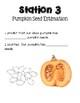 Pumpkin Exploration Booklet