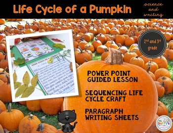 Pumpkin Expository Writing Lesson with Life Cycle Craft